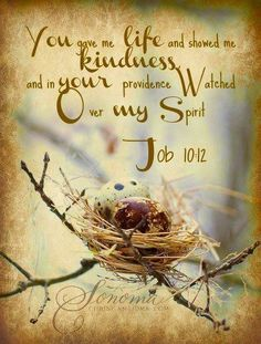 Job 10:12  You gave me life and showed me kindness. and in your providence watched over my spirit.