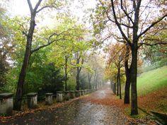 Graz Country Roads, Graz