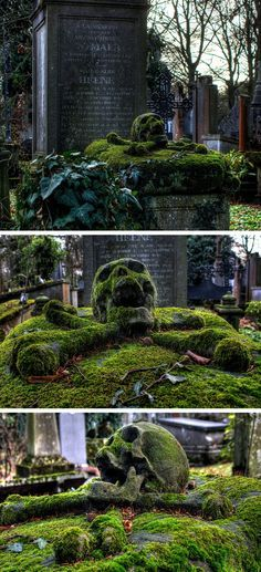 Let be how the moss has grown over this skull and crossbones. Beautiful photo of a tombstone in a cemetery. I didn't take the pic, but GothicGourdGirl loves it! Memento Mori, La Danse Macabre, Grave Headstones, Old Cemeteries, Graveyards, Cemetery Art, Cemetery Monuments, Skull And Bones, Skull Art