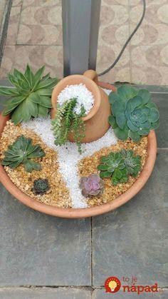 Prekrásna mini skalka v kvetináči: Pár kamienkov, obľúbené skalničky a kvetináč - 17 inšpirácií do bytu aj do záhrady!