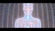 Shpongle (psychedellic trance)