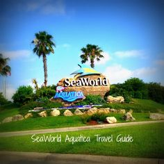 SeaWorld Aquatica SanAntonio1 SeaWorld Aquatica San Antonio Travel GuideThe notion that SeaWorld is just for kids was instilled in my head, until now. So I'm sharing with you my awesome experience to give you a SeaWorld Aquatica San Antonio Travel Guide for all ages!