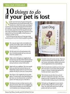 10 things to do if your pet is lost - Please pass this around, just in case! Veterinary Care, Veterinary Medicine, Cat Care Tips, Dog Care, Pet Tips, Dog Facts, Love Your Pet, Losing A Dog, Pet Health