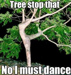 DON'T LISTEN TO THEM, TREE. IF YOU WANT TO DANCE THEN DO IT. YOU ARE WHO YOU ARE!