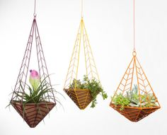 Modern Planters by Hedge Outdoor
