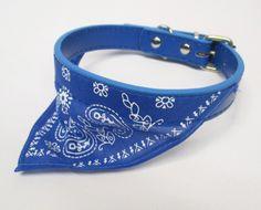 Panta bandana BLUE Huivipanta sininen. Pehmeää keinonahkaa. Pituus 45cm leveys 1,8cm Säätö 5 reikää 32-39cm - See more at: http://somemore.fi/tuotteet.html?id=8/92#sthash.G1aRIGNl.dpuf
