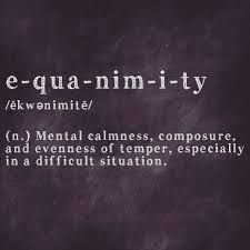 Image result for equanimity