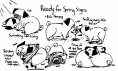 Bah Humpug: Ready for Spring