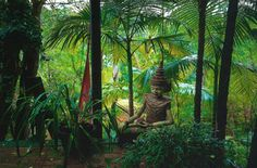 private Balinese Garden, Garden Styles, My Dream, Outdoor Gardens, Outdoor Living, Home And Garden, Tropical Gardens, Plants, Doors