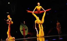 """Acrobats with the world famous troupe Cirque du Soleil perform at the Big Top Tent in Sydney on September 12, 2012 during a dress rehearsal for the insect-themed show """"OVO"""", meaning egg in Portuguese. Photo: AFP/Romeo Gacad"""