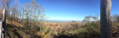 Blue Mountain Lookout