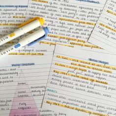 Urja's Studyblr : Photo