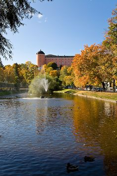 Uppsala Castle and Svandammen (The Swan Pond), Uppsala, Sweden Places Ive Been, Places To Go, Lappland, Uppsala, Europe, Sweden, Pond, Castle, River