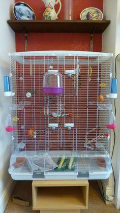 hagen vision bird cage #parrotcagediy #parrotcageideas