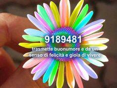 La Mente controlla la Materia: Attivazione del Te numero_per_la_felicita_16_1.jpg (Art. corrente, Pag. 1, Foto normale)