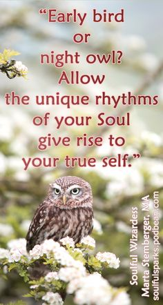 How do you find your unique rhythms to support conscious daily living? Tune into Soulful Sparks Radio... Soulful Wizardess Marta Stemberger talks about Rudolf Steiner's Calendar of the Soul, as well as his other insights, including the eurythmy Zodiac and planetary circles, all sprinkled with her own spiritual research and lived experience. Be inspired to find your daily, weekly, monthly, seasonal rhythms that express your uniqueness.
