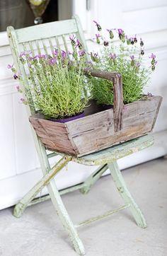 Planting Idea.. Love that chair