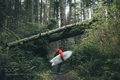 500px Editors Choice : Surfing In Olympic National Park by Fursty
