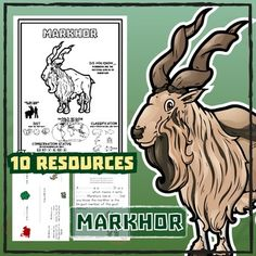 markhor 10 resources coloring pages reading activities