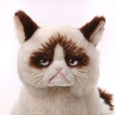 Gund Grumpy Cat Plush Stuffed Animal Toy New Free Shipping #GUND