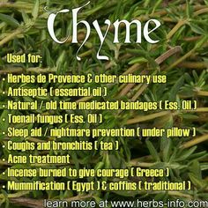 Holistic Health Remedies ❤ Herb Of The Day: Thyme ❤ Natural Health Remedies, Herbal Remedies, Natural Remedies, Herbs For Health, Healthy Herbs, Health Tips, Health Care, Natural Medicine, Herbal Medicine