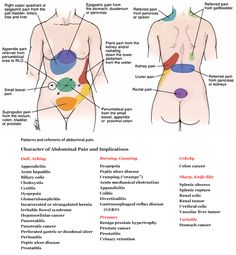 Field Guide to ParaMagic - Abdominal and back pain implications and referents #anatomy #doctors #nurses