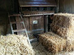 Safe and Easy Winter Coop Heat and Insulation