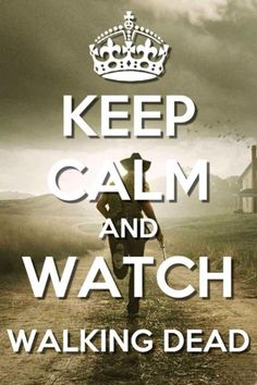 Keep Calm and Watch The Walking Dead Walking Dead Quotes, Walking Dead Season 4, Walking Dead Series, Fear The Walking Dead, Walking Dead Zombies, Andrew Lincoln, Keep Calm Quotes, Dead Inside, Great Tv Shows