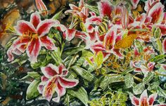 "rubram Lily with butterflies st kitts 19""  x 30"" micheal zarowsky / watercolour on arches paper available $1900.00"