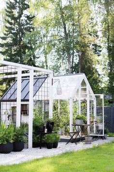 Greenhouse in the morning light - All For Garden Greenhouse Supplies, Small Greenhouse, Greenhouse Gardening, Vegetable Gardening, Garden Cottage, Home And Garden, Outdoor Spaces, Outdoor Living, Landscape Design