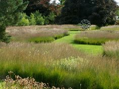 "Piet Oudolf, Trentham Gardens - ""Rivers of Grass"""
