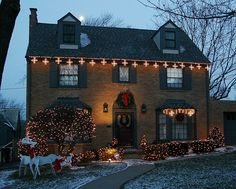 Holiday Lawn Light Decoration-Arkansas