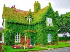 "An Alternative ""Greenhouse"""