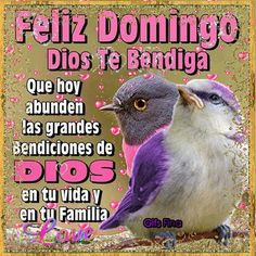 Night Quotes, Good Morning Quotes, Me Quotes, Feliz Domingo Gif, Cute Good Night, Biblical Verses, Free To Use Images, Good Morning Greetings, Love Messages