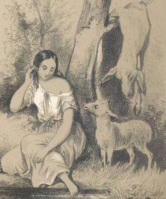 Les contes des fées / par Charles Perrault ; illustrés par J.-C. Demerville   Gallica