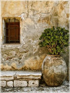 Rustic Home Decor Cagnes-sur-Mer.Rustic Home Decor Cagnes-sur-Mer French Country Exterior, French Country House, Tuscan Design, Tuscan Style, Olive Jar, Belle Photo, Garden Inspiration, Garden Pots, Container Gardening