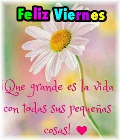low cost healthy recipes for two people kids pictures Sad Love, Love You, Good Morning In Spanish, Hello Quotes, Always Remember You, Morning Greeting, Best Quotes, Positivity, Words