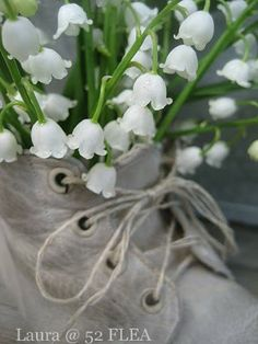 Lily of the Valley in Baby's shoe
