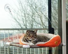 """Original KITTY COT """"World's BEST Cat Perch""""  The Original Kitty Cot is a terrific design that's sure to thrill your Kitty Cat. The Kitty Cot differs from a lot of Cat Perches and connects to your windows making use of PATENTED Giant Suction Cups, made in the USA. Each suction cup is rated to hold 15 pounds. The Kitty Cot measures 26"""" long from outside of suction cups x 14"""" wide. The frame is made from strong and durable plastic pipeline. The hammock is made from tough weather-resistant…"""