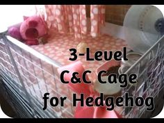 ▶ *Hedgehog Cage Tour & How to Build a C&C Cage for hedgehog - YouTube