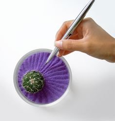 here is the zen garden with color sand. looks cool. It is done in a custard cup size container Mini Zen Garden, Indoor Garden, Indoor Plants, Mini Cactus, Cactus Flower, Purple Love, Shades Of Purple, Little Gardens, Plants Are Friends
