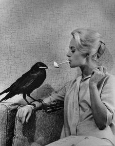 Tippi Hedren in The birds (Alfred Hitchcock, 1963)