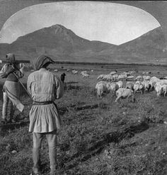 Shepherds and their flocks on the Argive Plain, Greece. Created / Published c1906. Stereo copyrighted by Keystone View Co. Library of Congress Prints and Photographs Division Washington, D.C.