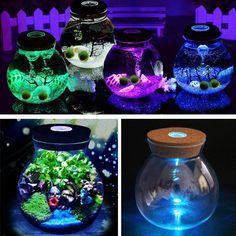 DIY Moss Micro Landscape Glass Bottle with LED Light Succulent Plants Vase Home Decoration - Banggood Mobile