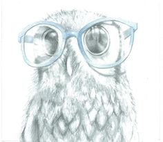 "Nosy Owl ""Stuart"" Original Drawing, Pencil Drawing, Owl Decor, Animal Art,  Unusual Gift, Funny, Quirky, Geek Art, Hipster, Size10x11 on Etsy, $47.41"