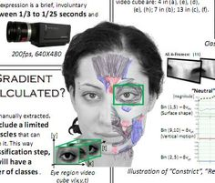 how to become a human lie detector pdf