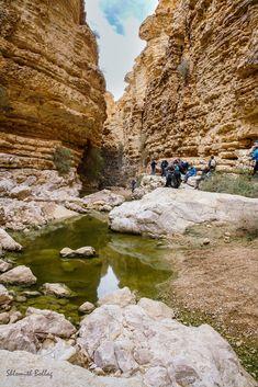Golf Courses, Nature, Travel, Landscapes, Naturaleza, Viajes, Destinations, Traveling, Trips