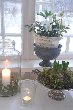 Beautiful, I love the flower that is wrapped in sheet music and the candles. It is great to have flowering bulbs inside when there is snow on the ground!