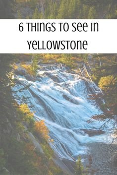 6 Things to See in Yellowstone National Park You Need to Know About