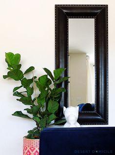 Say Hello to My Fiddle Friend #fiddleleaffig #mirror #livingroom